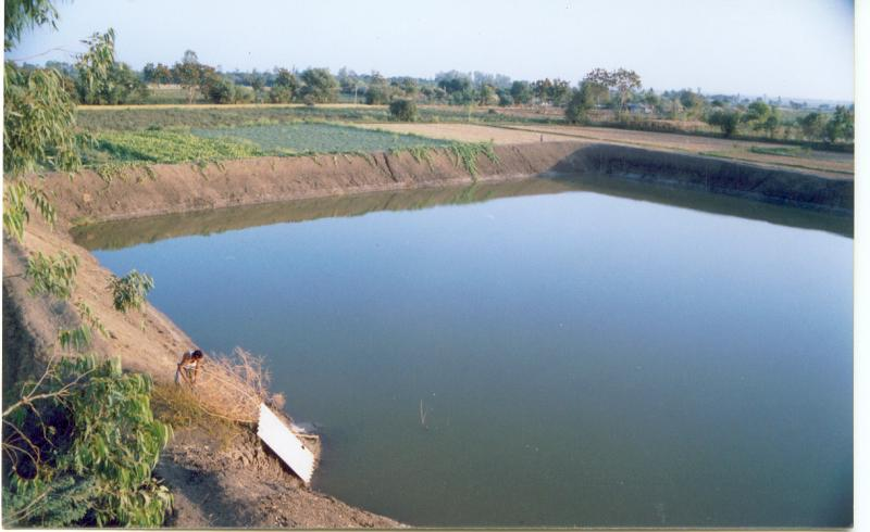 Water Harvesting Structures created by Janakalyan in tail end